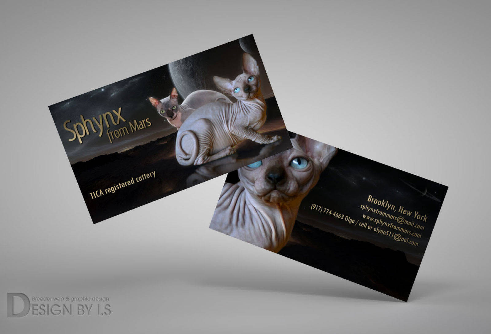 Business cards for cat breeder
